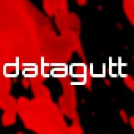 datagutt